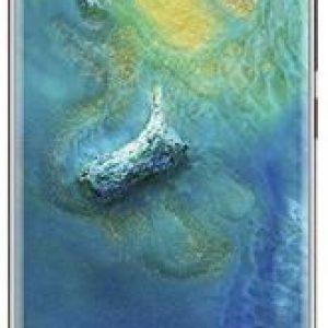 Huawei Mate 20 Pro 128GB dual sim kaina 892